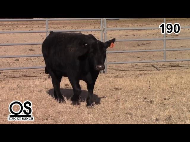 Stucky Ranch Lot 190