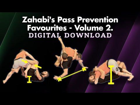 The Importance Of The Guard In Jiu-Jitsu  And Much More - AMA 78 Coach Zahabi