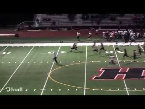 Ryan Ford #3 Strong Safety Huntley (Illinois High School Football) 2014-2015