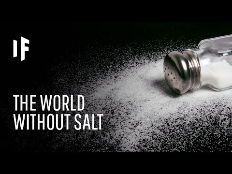 What If There Was No Salt in the World?