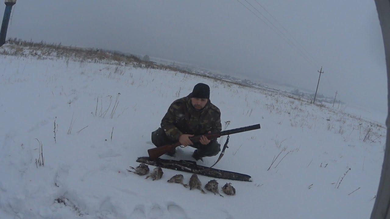 охота на куропаток зимой видео