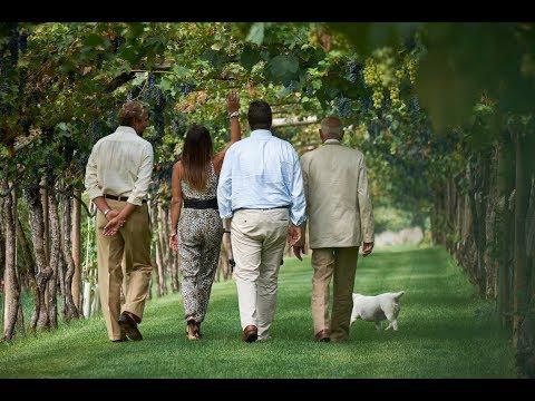 Wine Passport | Episode 4 | The Noble Wines from Trentino