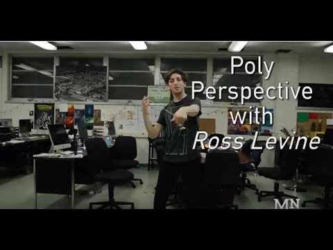 Poly Perspective with Ross Levine