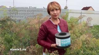 видео Устройство газона для цветников