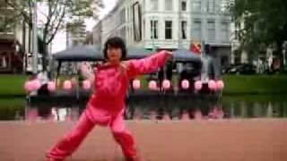 Tai Chi Kung Fu Fan (52 moves)