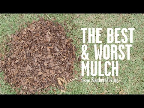 The Best And Worst Mulch For Your Garden | Southern Living
