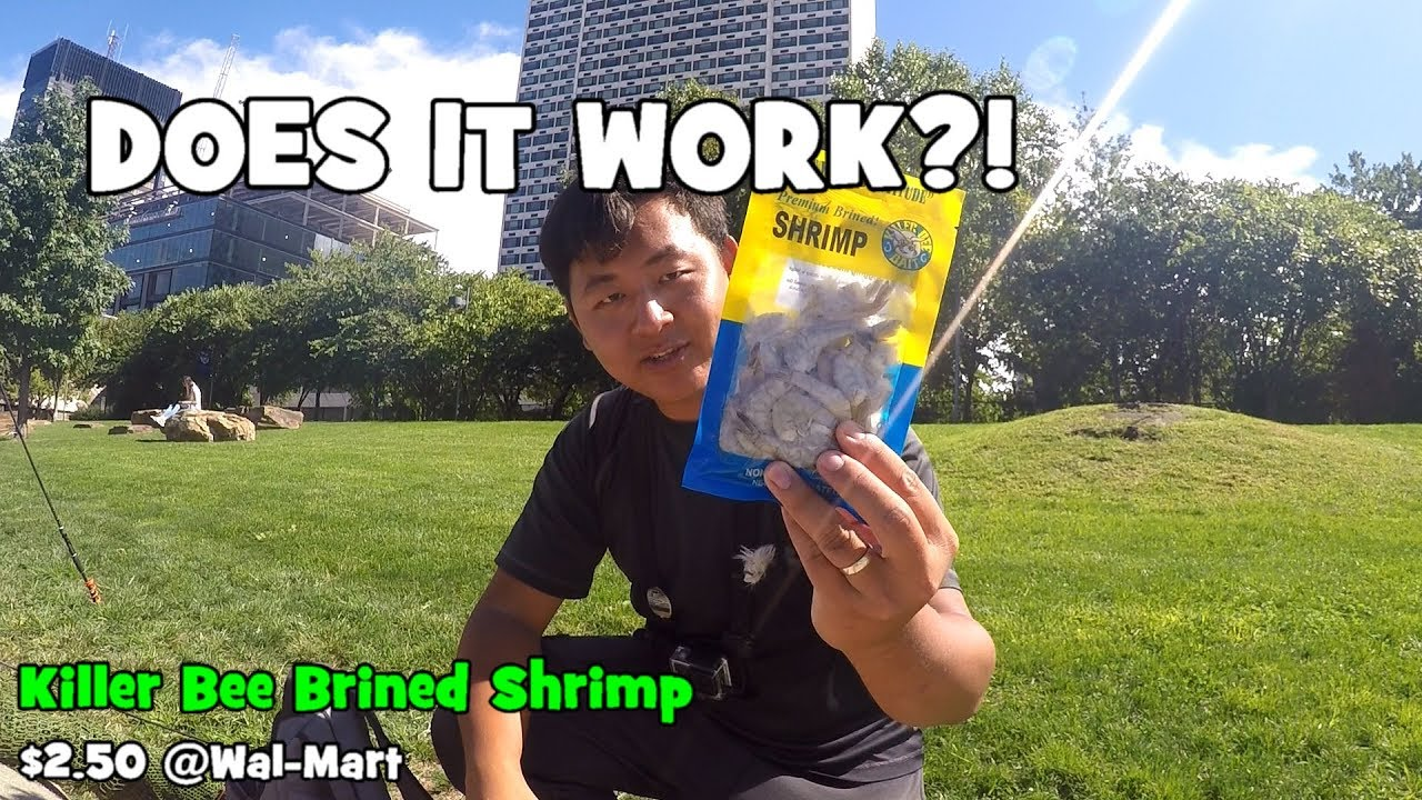 Fishing with packed shrimp does it work philadelphia for Free fishing day 2017 pa