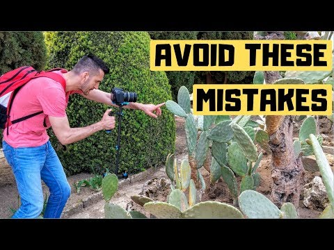 how-to-learn-from-mistakes-of-others