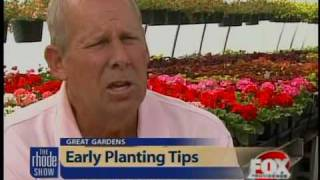 Great Gardens: Early planting tips
