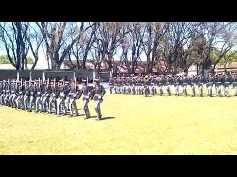 LICEO MILITAR GENERAL SAN MARTIN - DIA DEL LICEISTA 2015- DESFILE CPO. DE CADETES