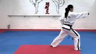 White Belt basic techniques - Saju Makgi and Saju Jirugi