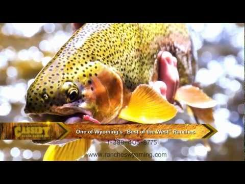 Wyoming Land For Sale - Wyoming Ranches For Sale - Fishing Properties - Hunting Properties