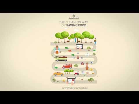 SavingFood Gleaning