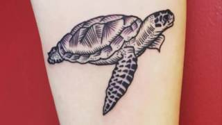 30 Coolest Turtle Tattoo Design Ideas