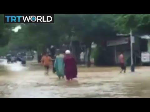 Typhoon Damrey: Interview with Casey Palmer