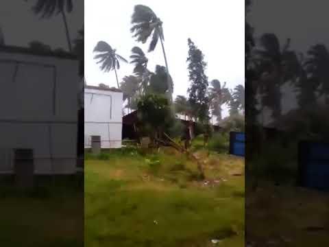 Kantor Camat Kelumbayan Tanggamus Roboh Diterjang Badai Siklon Tropis Dahlia
