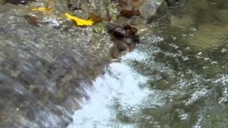Движение воды.