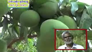 02 03 2015  Maleyasritha pradeshadalli samagra krishi paddathigalu