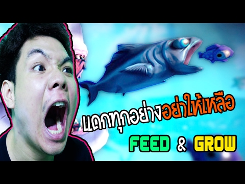 เกมปลาโหดพุ่งเขมือบสุดฮา : FEED & GROW
