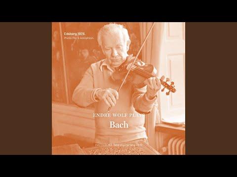 Concerto No. 2 in E Major for Violin and Orchestra, BWV 1042: III. Allegro assai