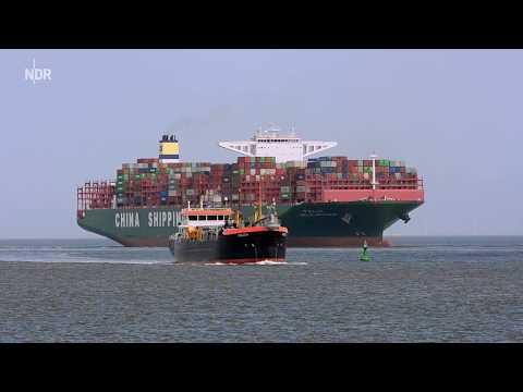 NDR mareTV: Am Jadebusen Wilhelmshaven und das Watt