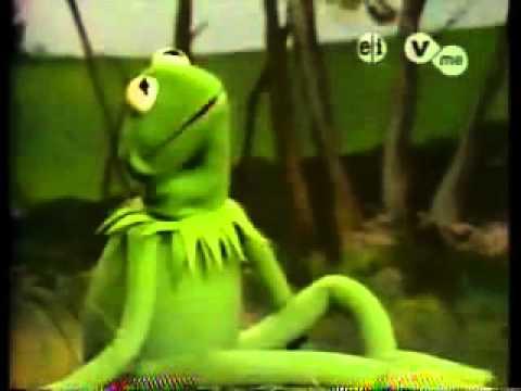 soy verde rana rene youtube