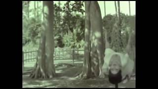 Oh milan mojo see | Songs |Tofha [Hindi ]