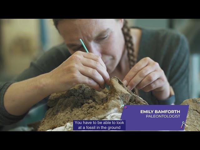 Emily Bamforth - Palentologist