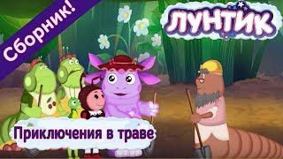 видео Приключение • ru.knowledgr.com