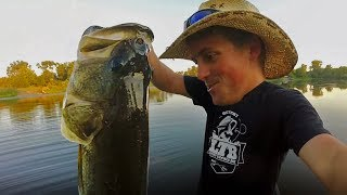 Catching MONSTER Bass On Topwater! Frog Fishing!