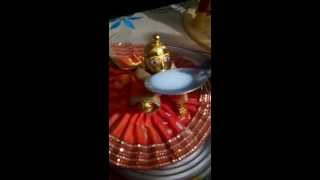 Laddu Gopal Drinking Milk ||  Officila Video ||  Tviral Video
