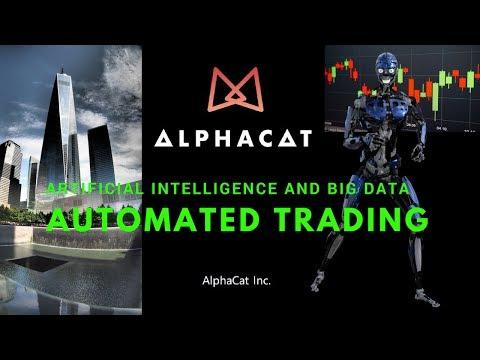 Alphacat Review:  NEO's Quantitative Investment Platform