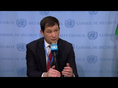 Russia on the situation in Ukraine - Security Council Media Stakeout (26 November 2018)