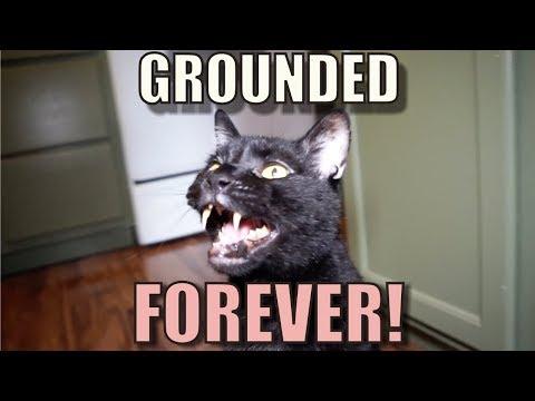 Talking Kitty Cat 59 - Grounded Forever!