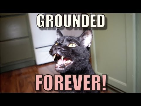 Talking Kitty Cat 59 - Grounded Forever!