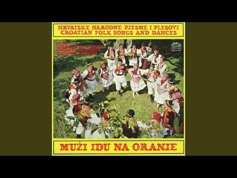 Plesovi I Pjesme Iz Slavonije Youtube