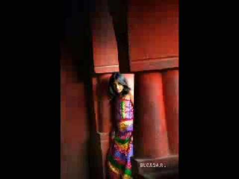 Bashir Hamdard-maida
