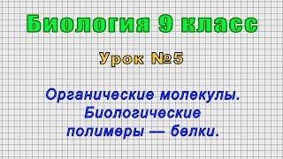 Биология 9 класс (Урок№5 - Органические молекулы. Биологические полимеры — белки.)