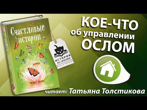 Аудиокниги. Из дома. Татьяна Толстикова. Кое-что об Управлении Ослом.