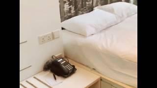 STUDIO M HOTEL SINGAPORE - ROO…