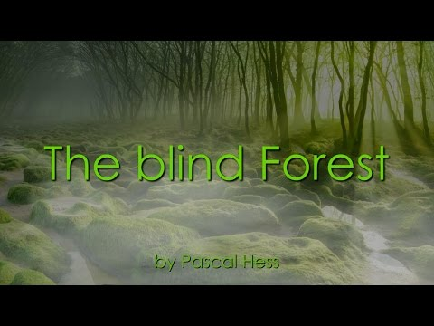 the-blind-forest-❤️-loveletter-background-song-by-brother-pascal-❤️