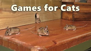 Cat Games : Mouse Watch TV ~