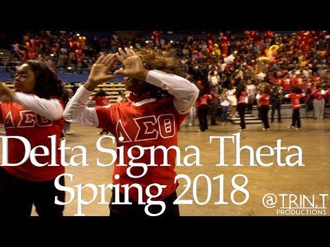 Delta Sigma Theta Sorority, Inc.   Alpha Tau Chapter   New Initiate Presentation (Spring 2018)
