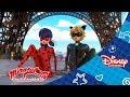 Kouzelná Beruška a Černý kocour (Kočičí komedie) - Ticho, ale vražedné. Pouze na Disney Channel!