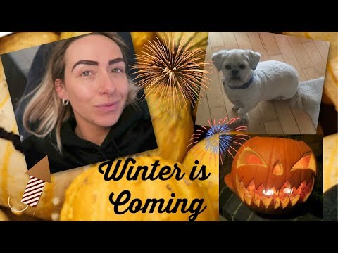 HE IS TERRIFIED, UNPACKING AND GETTING MY BROWS DONE | HALLOWEEN 2019 VLOG thumbnail