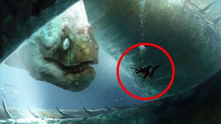 los 5 monstruos marinos ms grandes y poderosos del ocano  parte 2