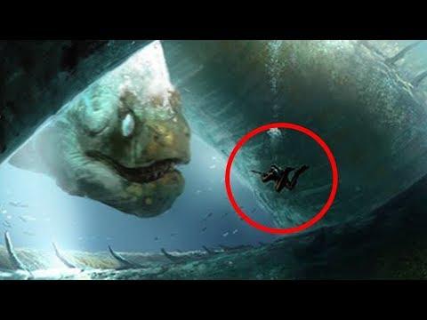 Los 5 Monstruos Marinos Más Grandes y Poderosos del Océano!! | Parte #2
