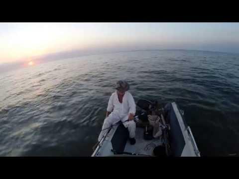 цимлянское водохранилище ловля сома