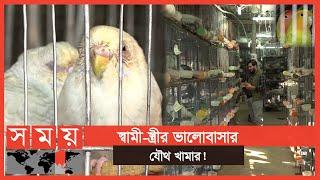 শখ থেকে সাফল্য, ৩ জোড়া থেকে হাজার জোড়া পাখি | Birds farm in bangladesh | Somoy TV