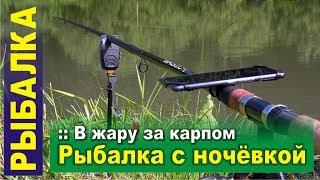 Рыбалка с ночевкой. В жару за карпом на платник, тестирую новое снаряжение
